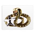 Пряжки змеи, лягушки